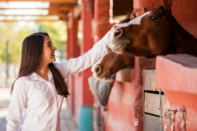 Find out more about our list of top residential treatment centers using equine and animal therapy